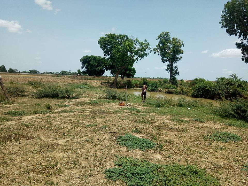 Land at Zuo