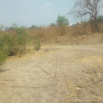 Land at Banglahi