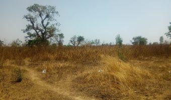 Land at Chanzeni